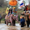 Si Satchanarai Ordination Procession on Elephant-Backの画像