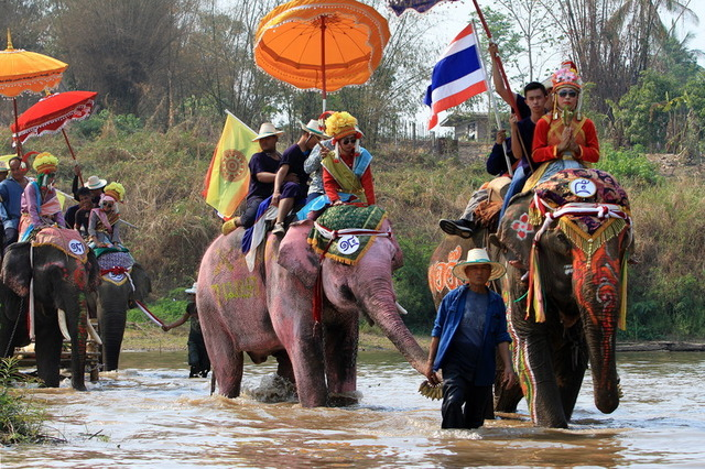 タイの祭事 2018年4月 ゾウに乗った出家式 Si Satchanarai Ordination Procession on Elephant-Backnewsclip